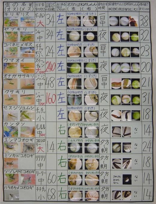まとめ方 自由研究 書き方 朝顔 小学 絵 | www.pikuchane.com